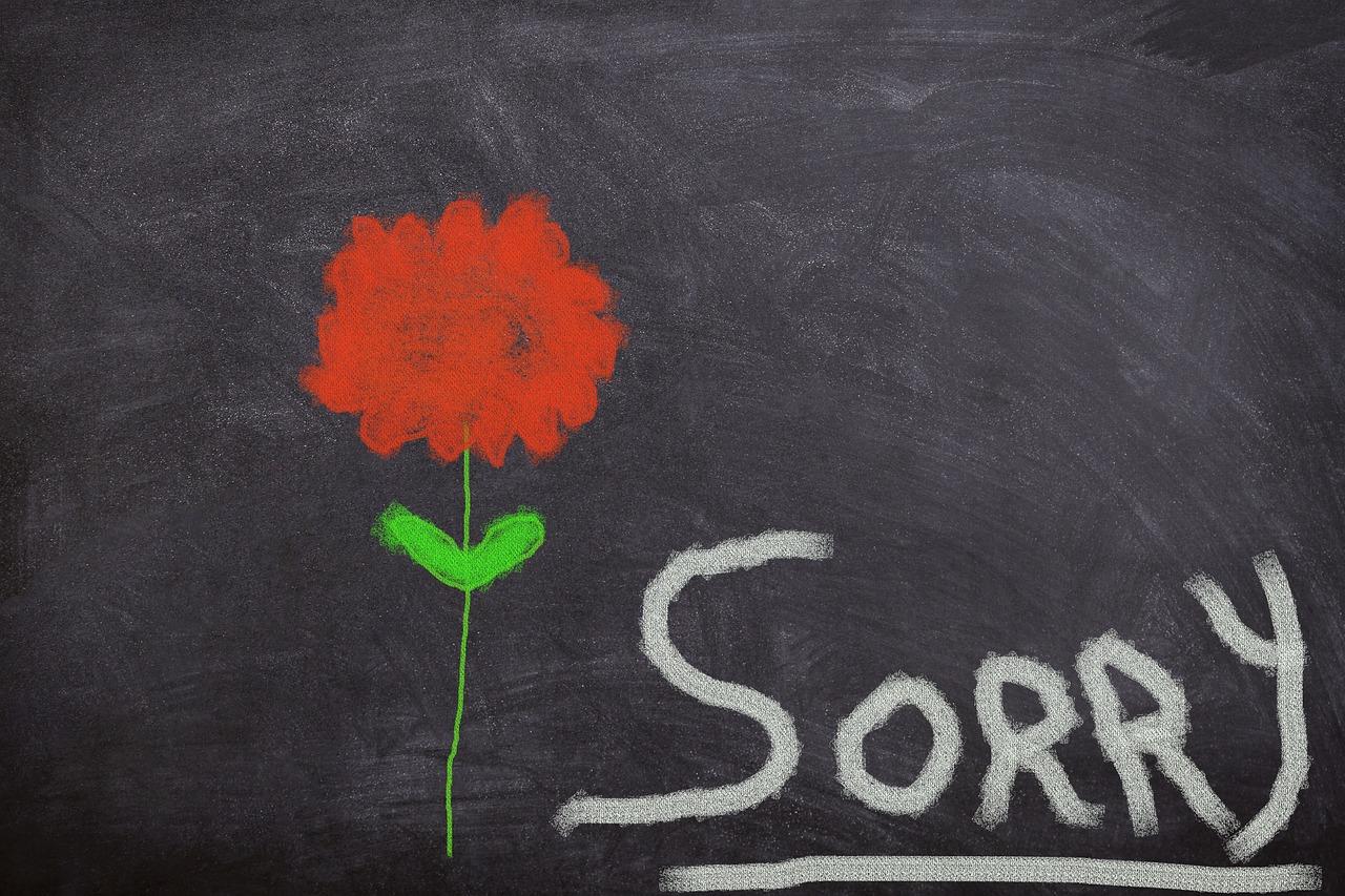 jak powiedziec przepraszam